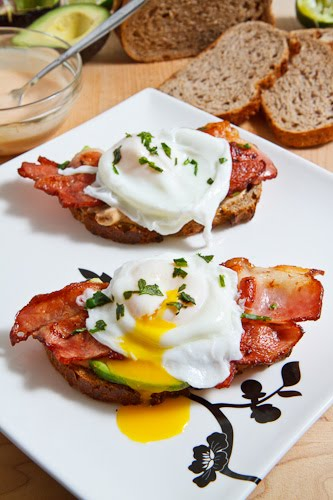 Poached Egg on Toast with Chipotle Mayonnaise, Bacon and Avocado 500 5936